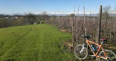 Cicloturismo: nuovo itinerario nel Roero